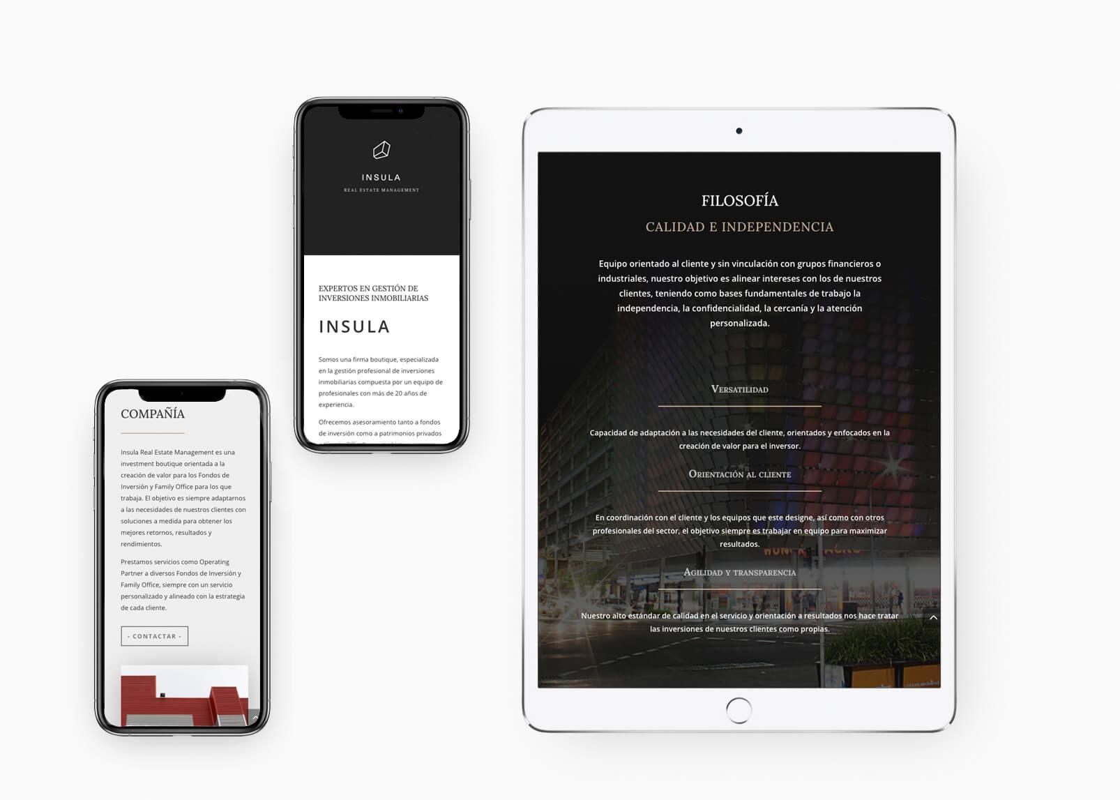 Diseño web Insula REM